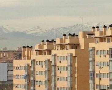 Seguridad social subasta 480 bienes en andaluc a procedentes de embargos por casi 48 millones - Oficina seguridad social sevilla ...